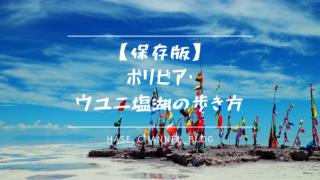 【保存版】ボリビア・ウユニ塩湖の歩き方|ウユニ塩湖ツアーを120%楽しむ方法